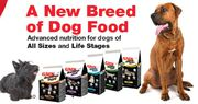Cat and Dog Food in Dublin - Feedyourpet.ie