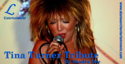 Tribute acts for venues,  weddings or private functions
