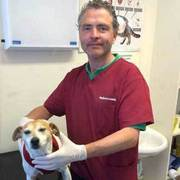 Find Vet Clinic in Dublin - Sandycove Veterinary Clinic