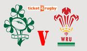Six Nations Ireland v Wales