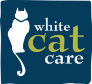 Get ready for holiday season,  cat sitting service in Dublin